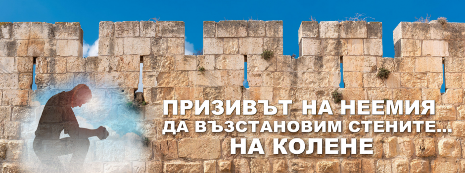 NEHEMIAH website Banner (23)